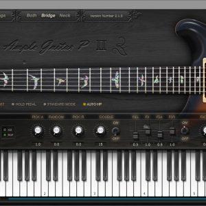 AGP (Ample Guitar P)